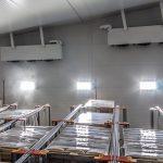 Ahorros de más del 100% del consumo energético en iluminación en instalaciones de logísticas de frio