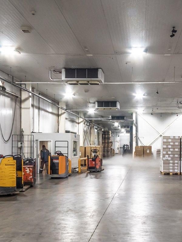 logistica de frio iluminacion industrial inteligente